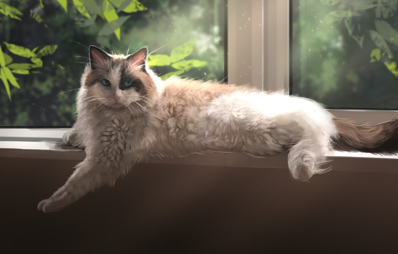Photo wallpaper cat, Window, Foliage