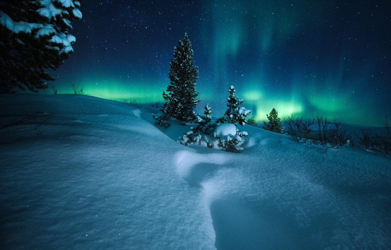 Photo wallpaper winter, snow, trees, night, Northern lights, Norway, the snow, Norway, Saltfjellet, Saltfjellet