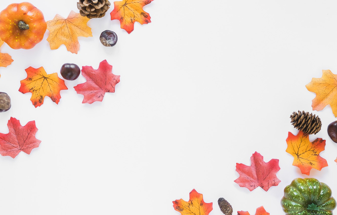 Photo wallpaper autumn, leaves, background, Board, colorful, pumpkin, maple, wood, background, autumn, leaves, autumn, pumpkin, maple