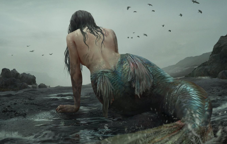 Photo wallpaper mermaid, monster, scales, fins, mermaid, rocky coast, cloudy sky, dark place, black crows, by Akiya