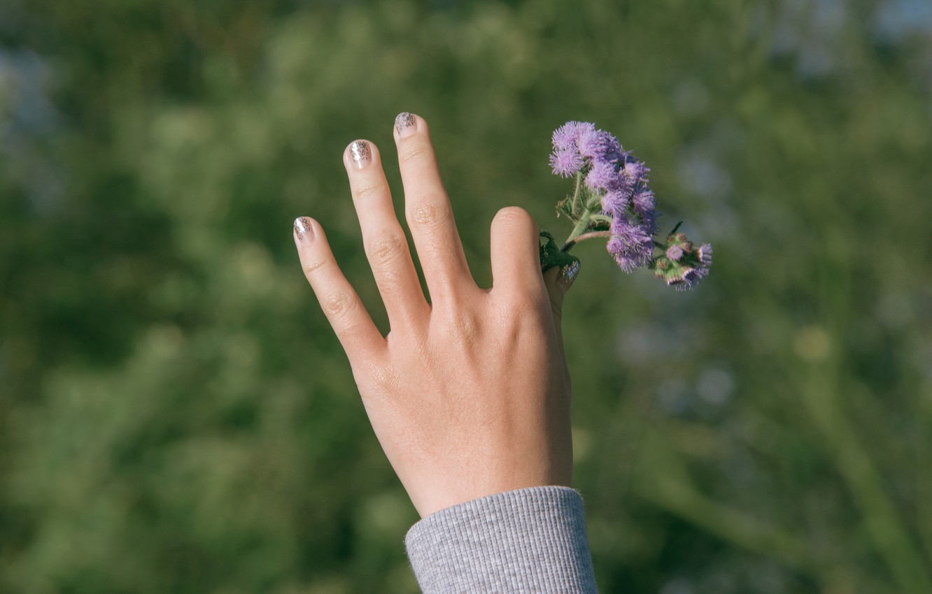 Photo wallpaper flowers, hand, bokeh