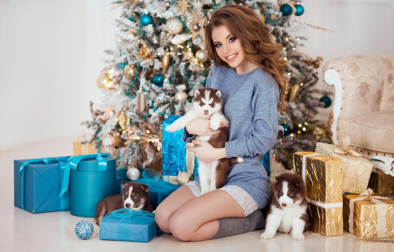 Photo wallpaper dogs, pose, smile, mood, model, puppies, gifts, New year, tree, husky, Natalia Naidenko, Mozhayskiy Julia …
