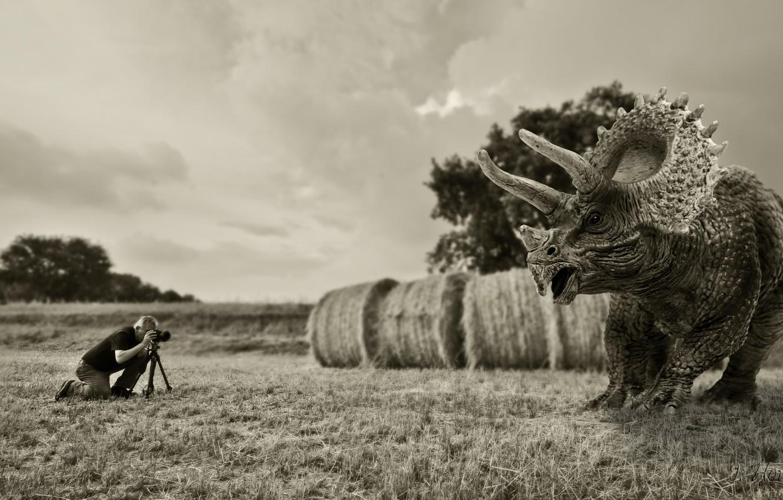 Photo wallpaper dinosaur, the situation, photographer