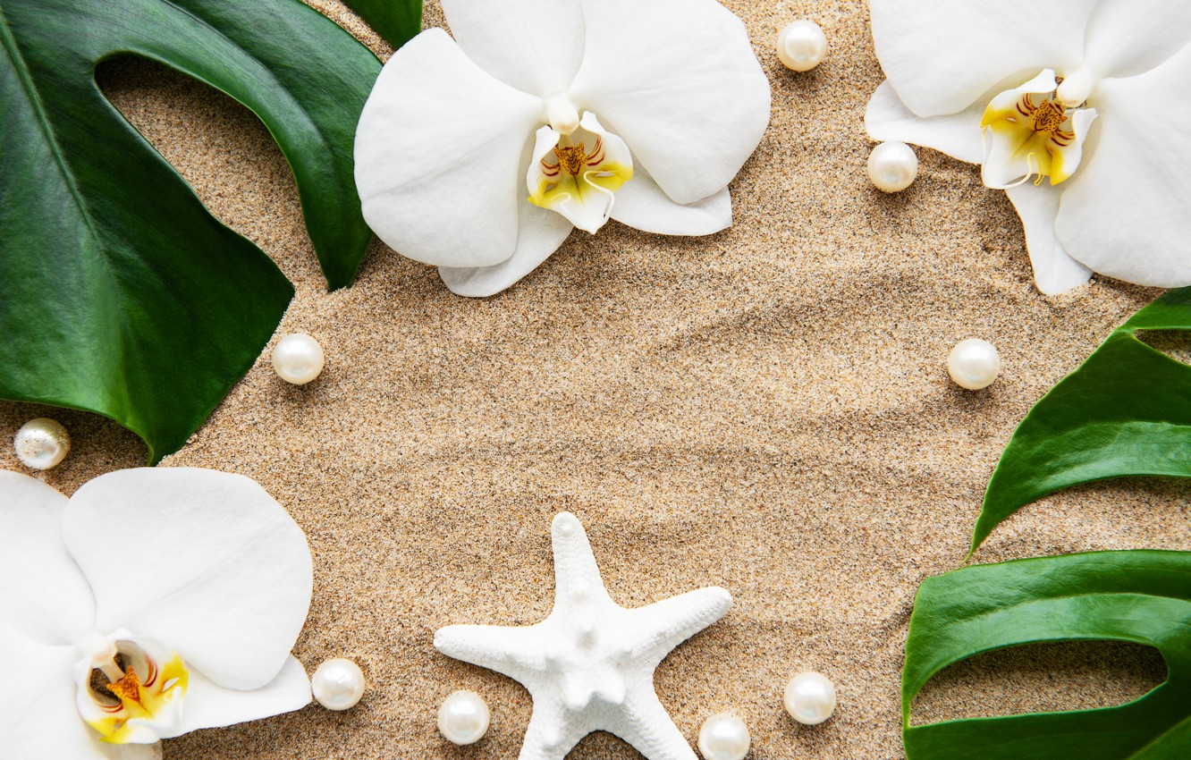 Photo wallpaper sand, leaves, flowers, white, Orchid, flowers, sand, orchid, pearls, spa, starfish, zen, perls