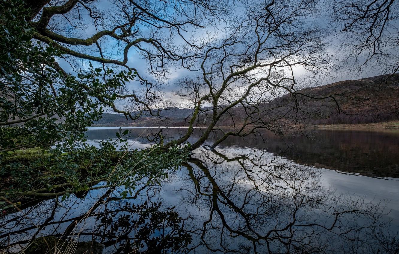 Photo wallpaper landscape, mountains, nature, river, tree, beauty, panorama