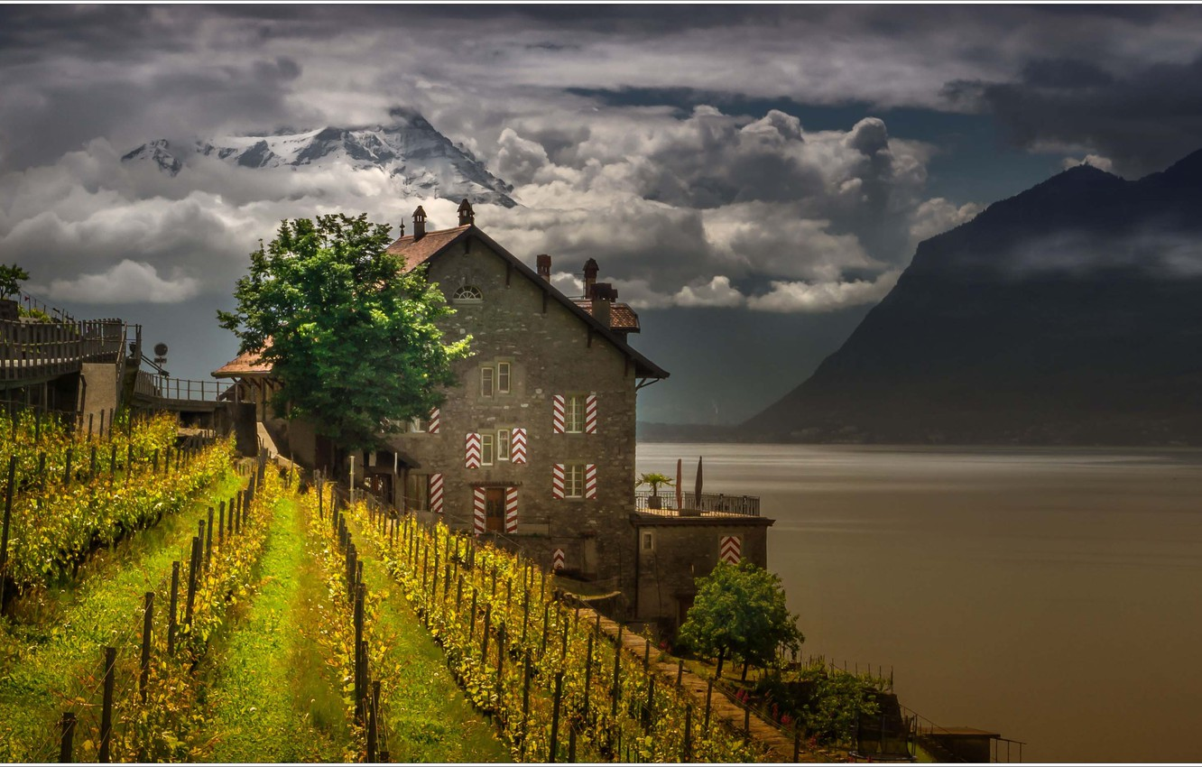Photo wallpaper mountains, lake, house, Switzerland, vineyard