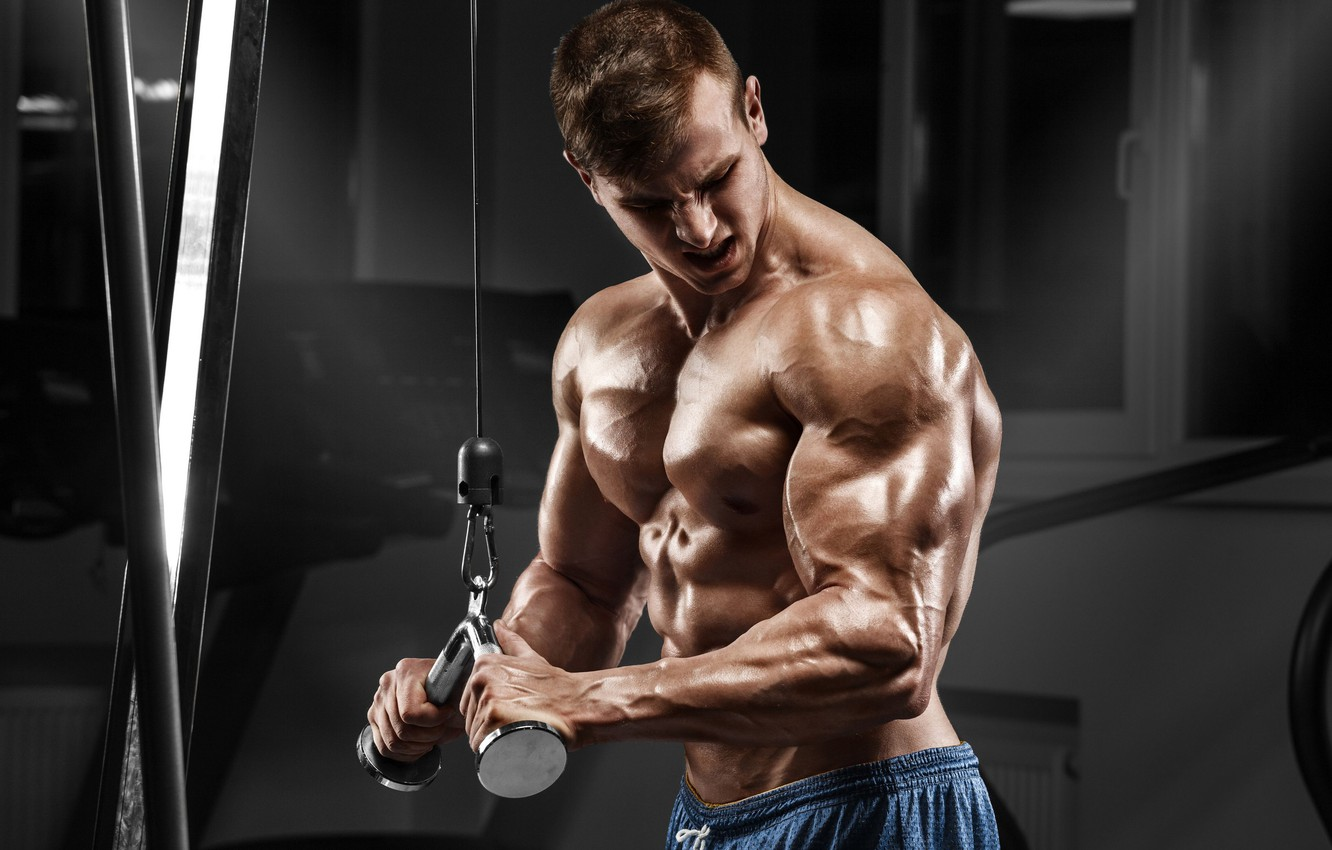 Photo wallpaper pose, fitness, muscle, muscle, athlete, simulators, biceps, gym, fitness, gym, bodybuilder, training, Gym, bodybuilder
