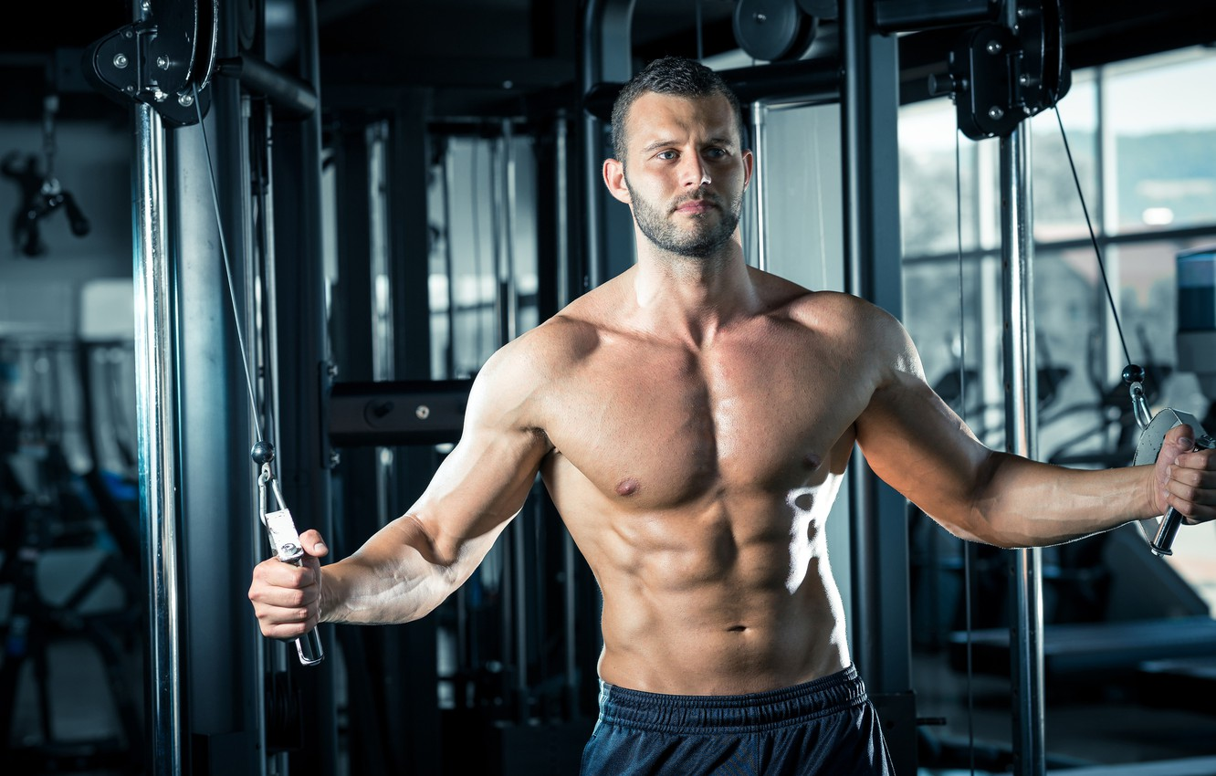 Photo wallpaper look, pose, fitness, muscle, muscle, press, athlete, simulators, gym, fitness, gym, bodybuilder, training, abs, Gym, …