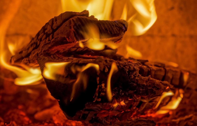 Photo wallpaper heat, fire, wood, plasma
