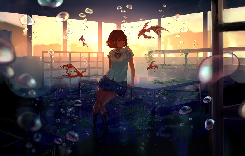 Photo wallpaper girl, fish, sunset, smile, bubbles, anime, art, form, class, schoolgirl, under water, desks, goroku