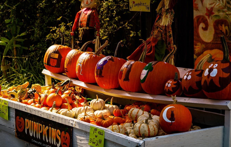 Photo wallpaper autumn, decoration, holiday, drawings, pumpkin, Halloween, market, Halloween, Bazaar, shelves, fair, selling
