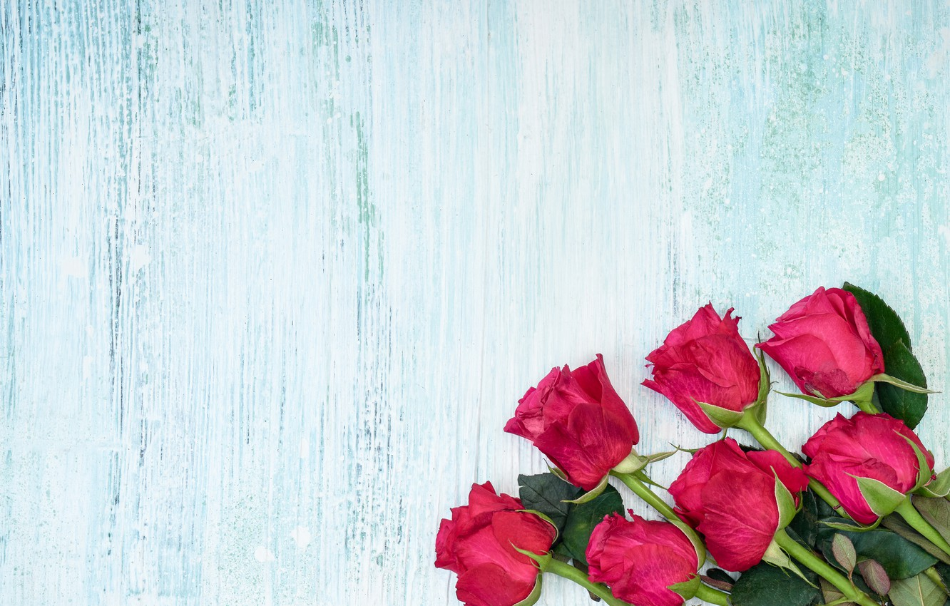 Photo wallpaper flowers, bouquet, Pink, Roses