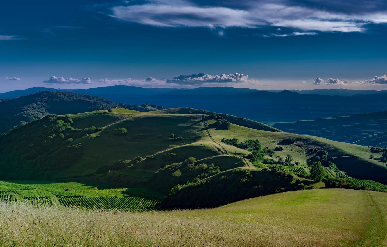 Photo wallpaper road, greens, field, summer, the sky, grass, clouds, light, trees, landscape, mountains, blue, hills, view, …