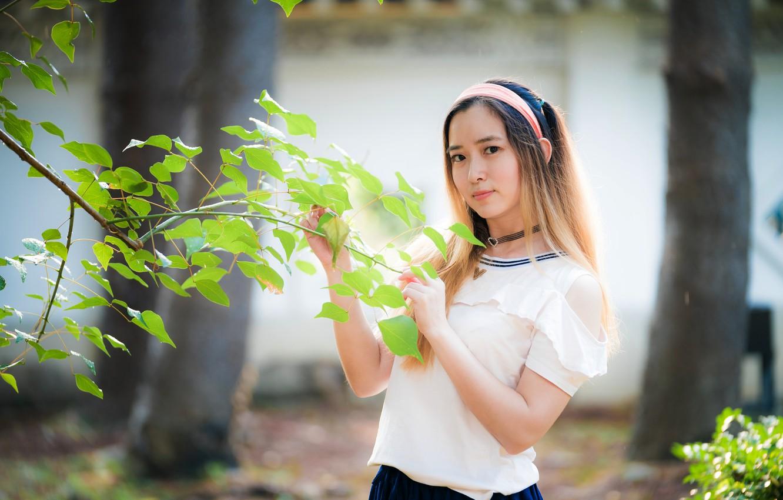 Photo wallpaper look, leaves, girl, branch, Asian