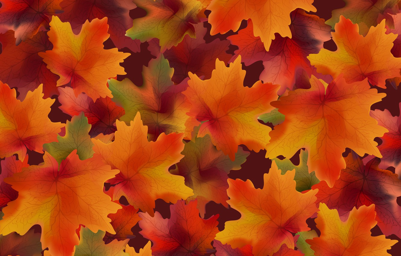 Photo wallpaper autumn, leaves, background, colorful, background, autumn, leaves, autumn, maple