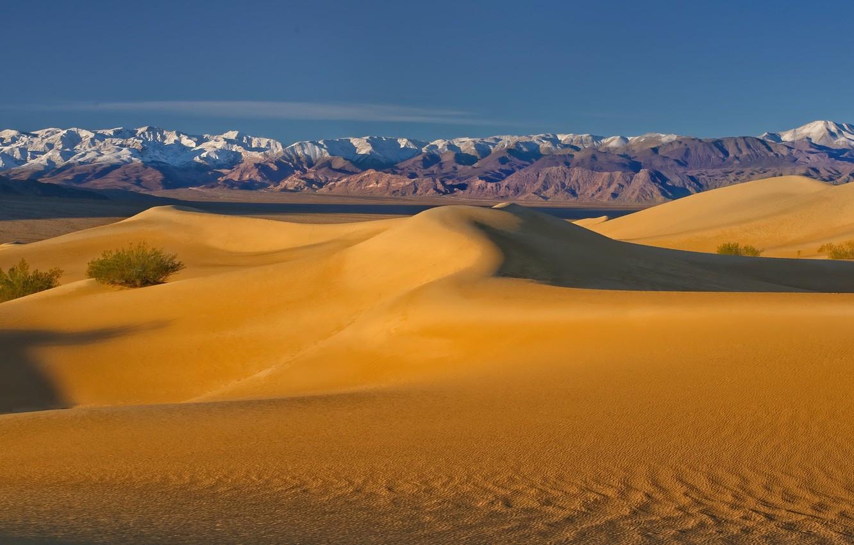 Photo wallpaper desert, dunes, CA, USA