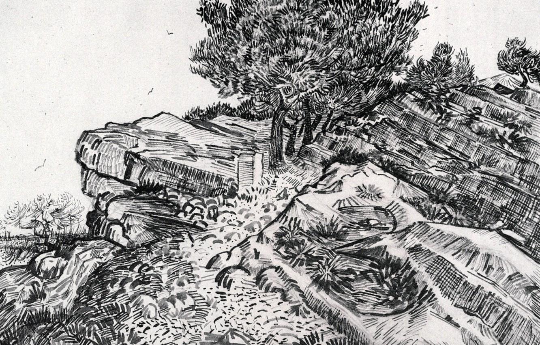 Photo wallpaper tree, slope, Vincent van Gogh, Montmajour