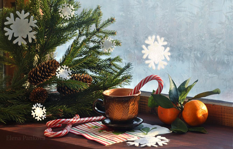 Photo wallpaper tree, window, mug, New year, Christmas, bumps, New Year, tangerines