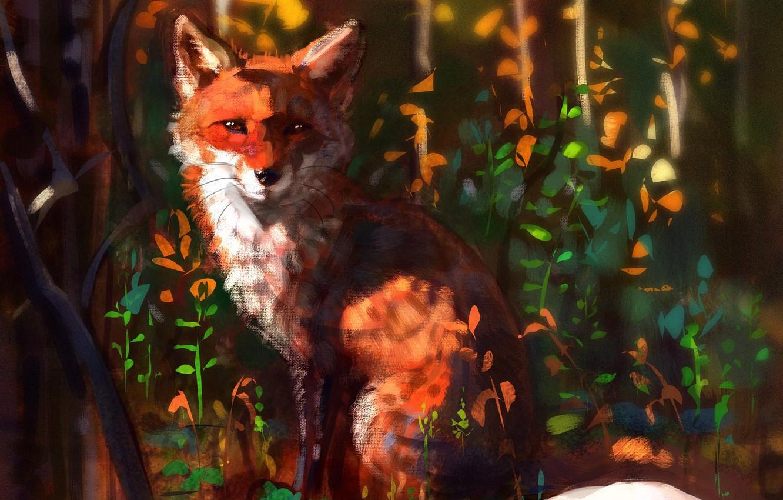 Photo wallpaper nature, Fox, sitting