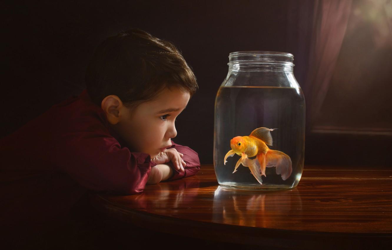 Photo wallpaper boy, goldfish, Bank