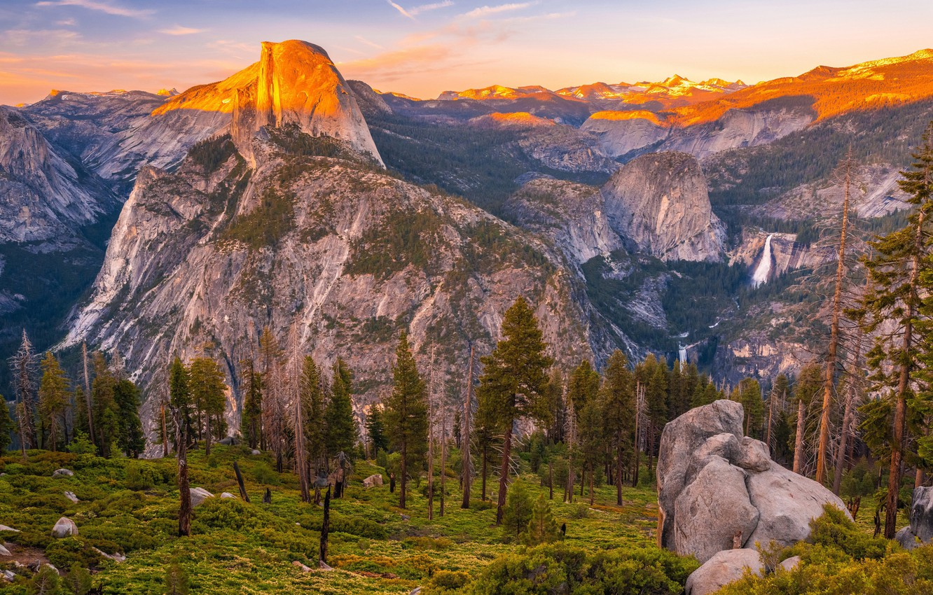 Photo wallpaper forest, landscape, Yosemite, waterfall, The Captain