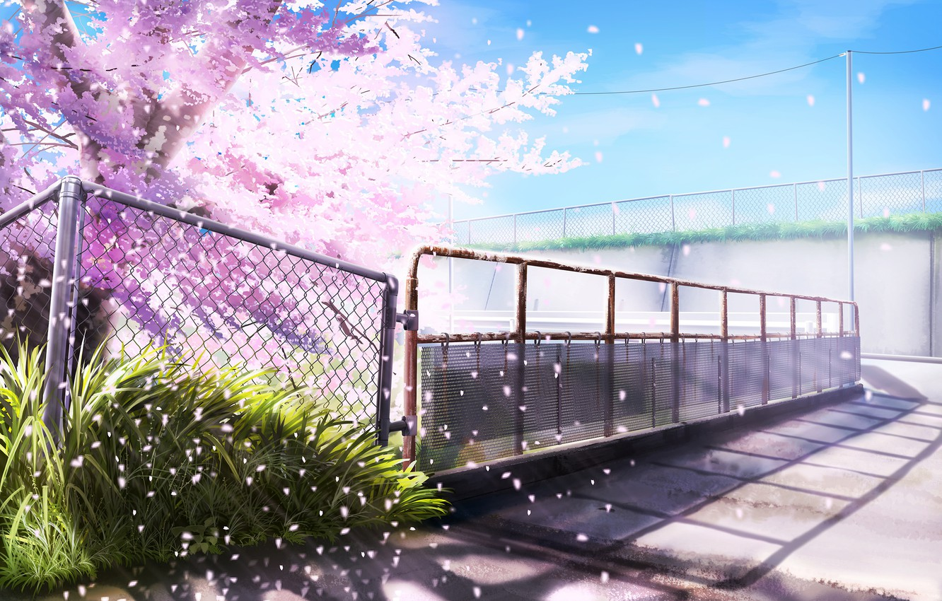 Photo wallpaper Spring, Mesh, The fence, Flowering tree