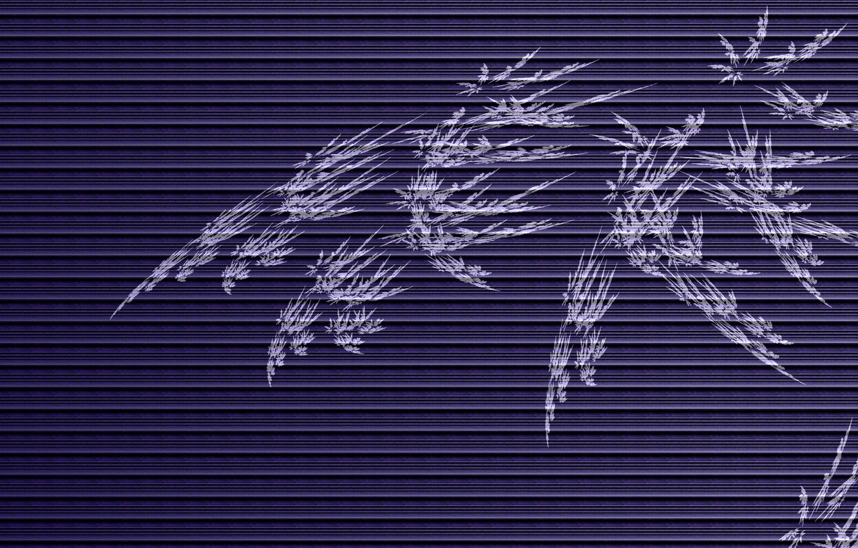 Photo wallpaper line, branch, horizontal, parallel