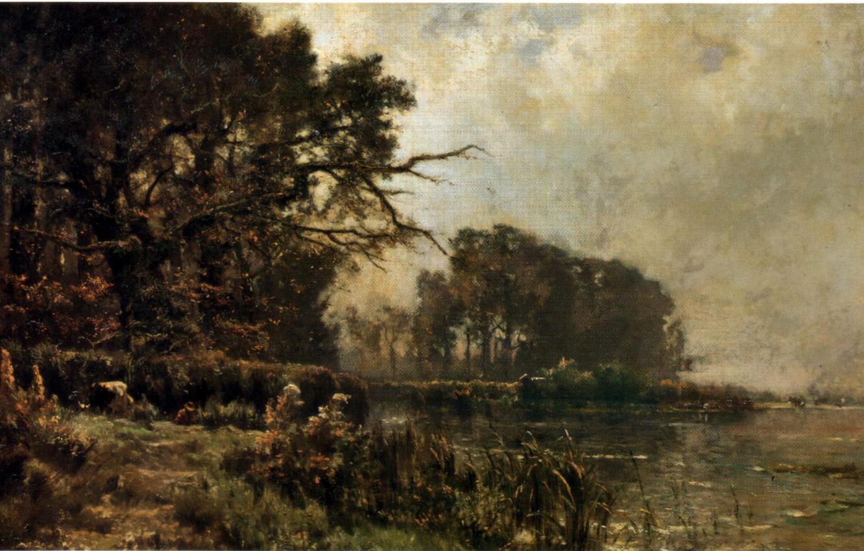 Photo wallpaper forest, grass, trees, river, ESchampheleer
