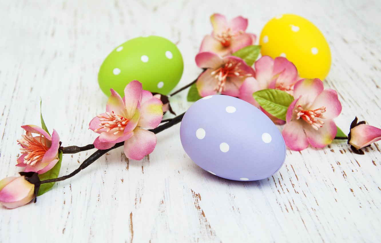 Photo wallpaper flowers, eggs, colorful, Easter, happy, wood, pink, blossom, flowers, spring, Easter, eggs, decoration