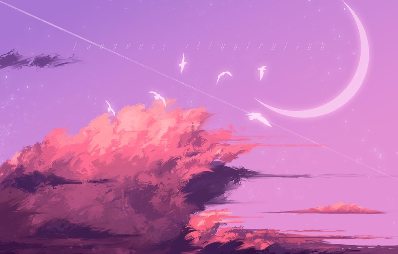 Photo wallpaper the sky, birds, Crescent