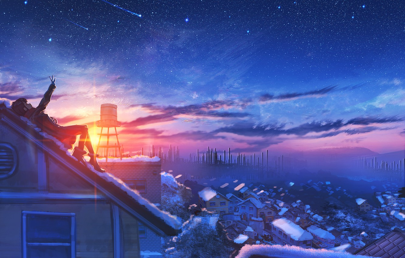 Photo wallpaper roof, girl, sunset, the evening