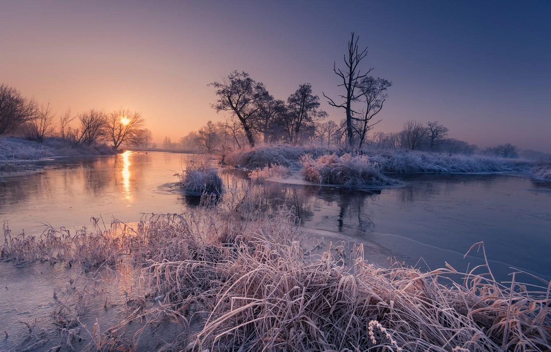 Photo wallpaper frost, autumn, trees, river, sunrise, dawn, morning, Robert Kropacz