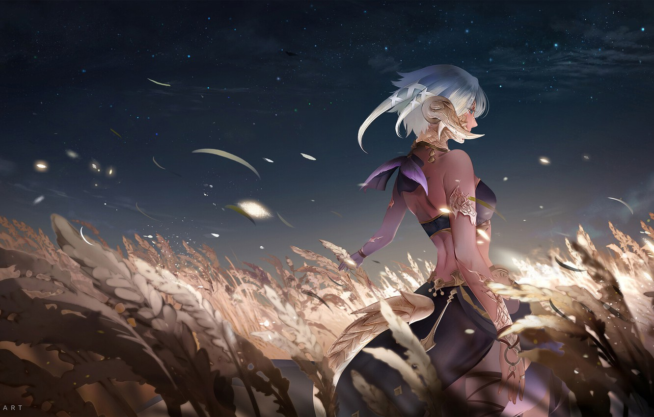 Wallpaper Girl Field The Game Girl Art Night Spikelets