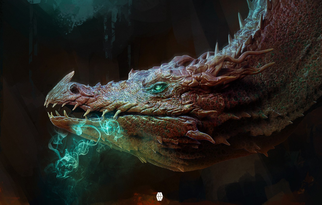 Photo wallpaper look, dragon, head, fantasy, art, profile