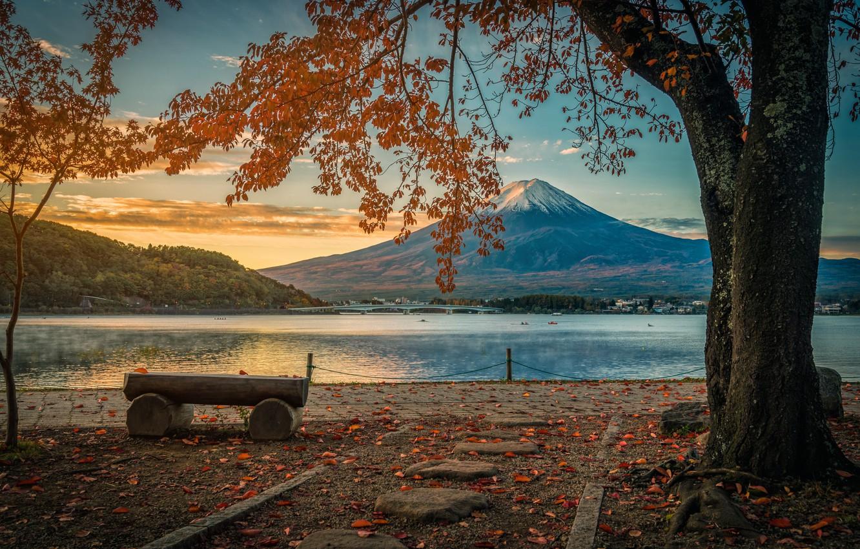 Photo wallpaper autumn, leaves, trees, Park, colorful, Japan, Japan, mount Fuji, landscape, nature, park, autumn, leaves, tree, …
