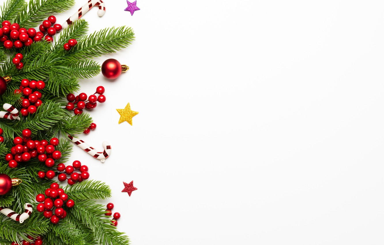 Photo wallpaper decoration, berries, New Year, Christmas, Christmas, New Year, decoration, xmas, Merry, fir tree, fir-tree branches