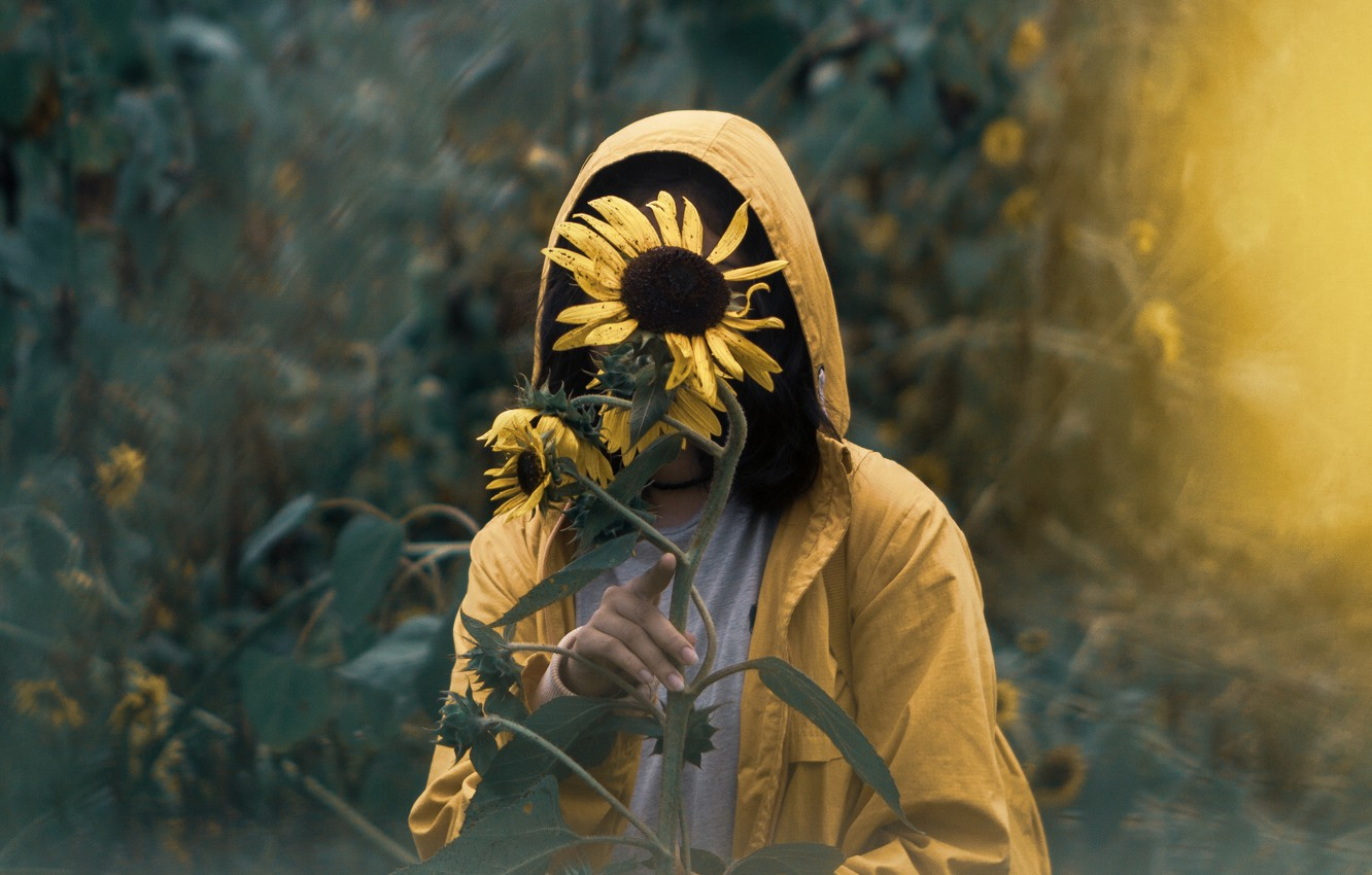 Photo wallpaper Girl, Alone, Solitude, Mood, Situation, Sunflowers