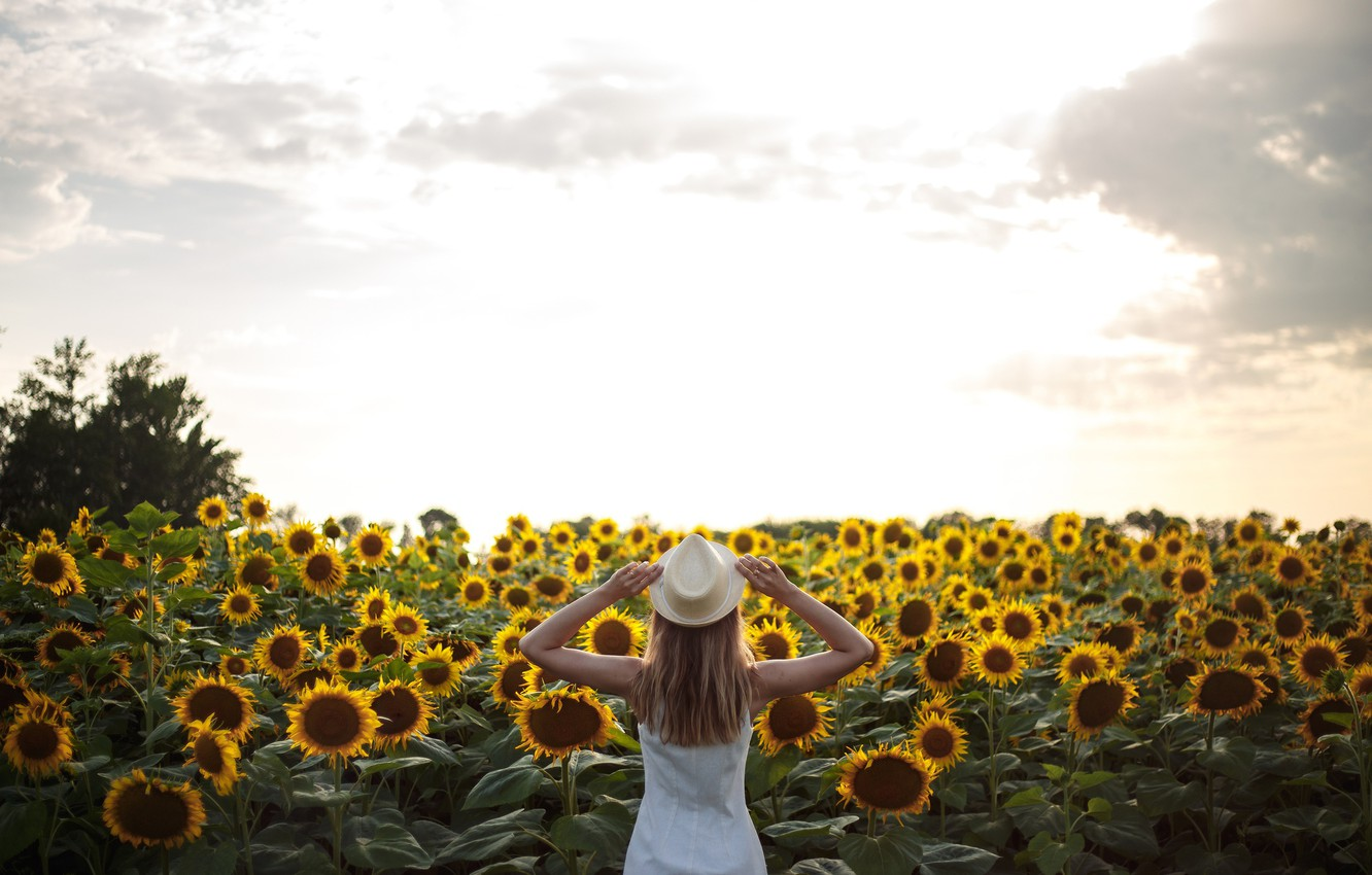 Photo wallpaper the sky, clouds, sunflowers, pose, Girl, hat, Anna Kovaleva