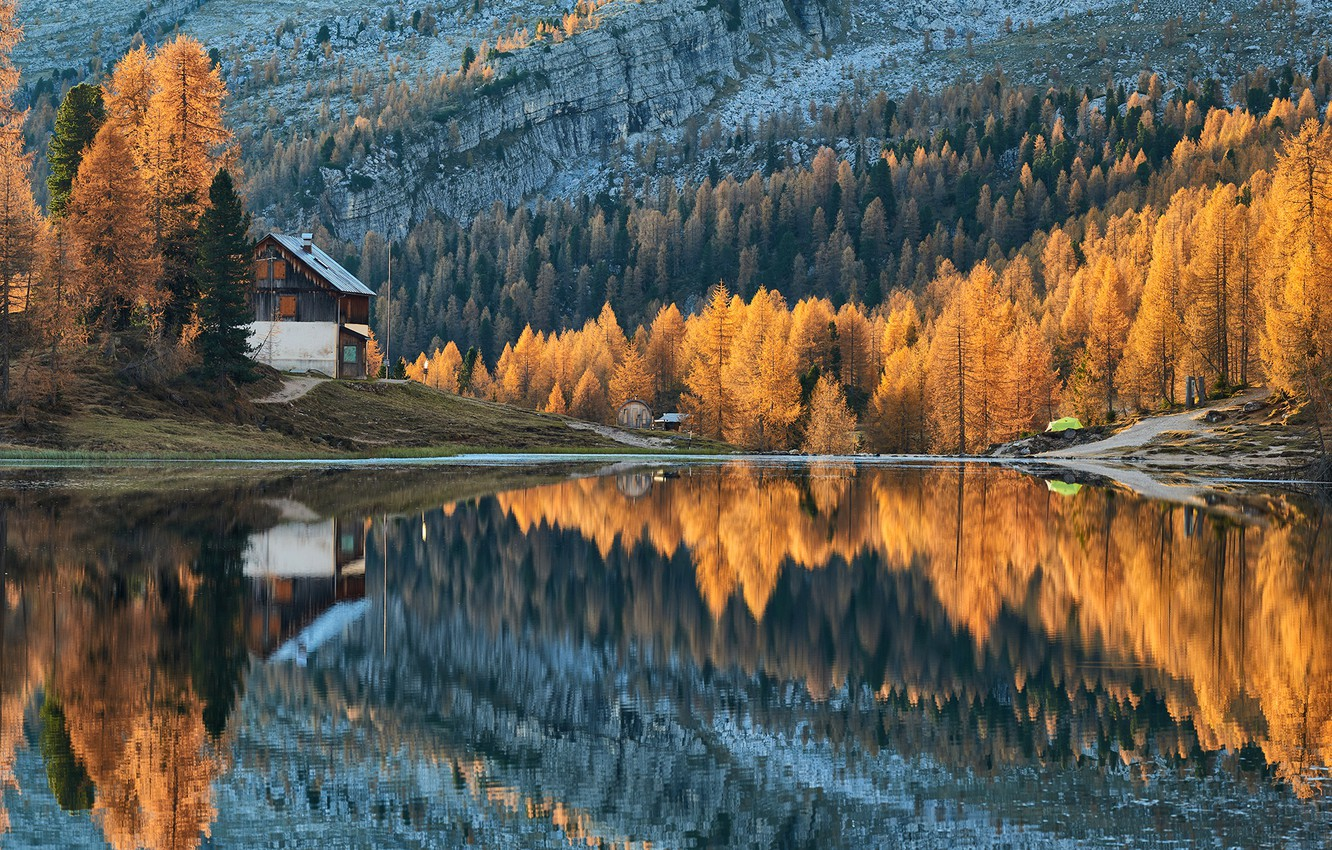 Photo wallpaper forest, trees, autumn, lake, cabin