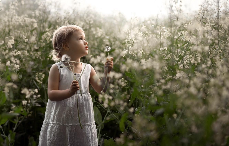 Photo wallpaper nature, dandelion, girl