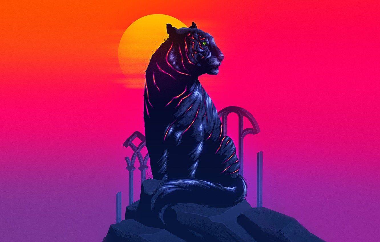 Wallpaper The Sun Cat Tiger Neon Animal James White Synth