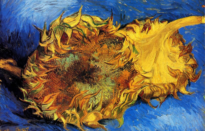 Photo wallpaper sunflower, Vincent van Gogh, vincent87, Two Cut Sunflowers 3