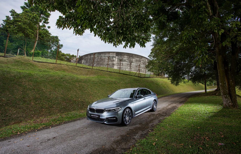 Photo wallpaper road, trees, grey, BMW, sedan, 530i, 5, four-door, 5-series, G30