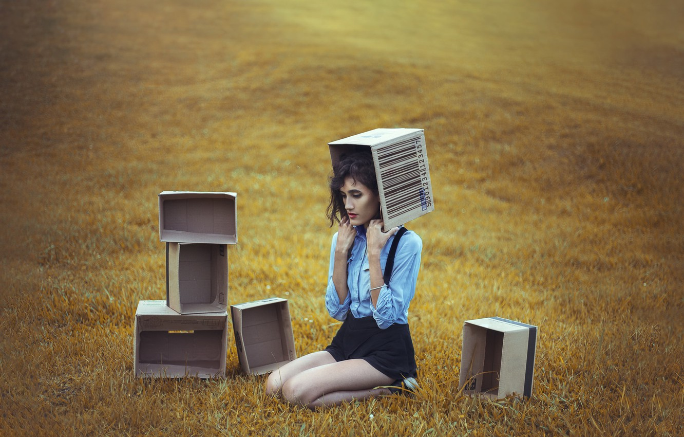 Photo wallpaper field, girl, box