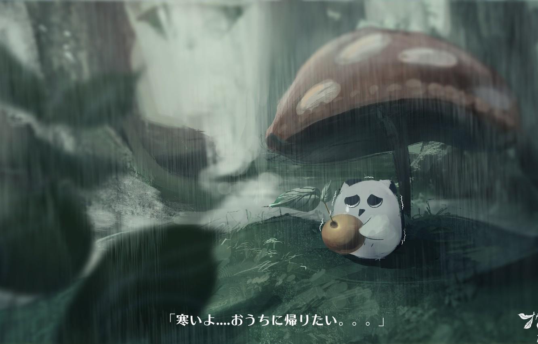 Photo wallpaper rain, mushroom, cherry, owlet, sad