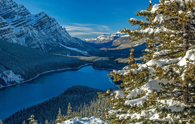 Photo wallpaper forest, snow, mountains, lake, spruce, Canada, Albert, Banff National Park, Alberta, Canada, Rocky mountains, Banff …