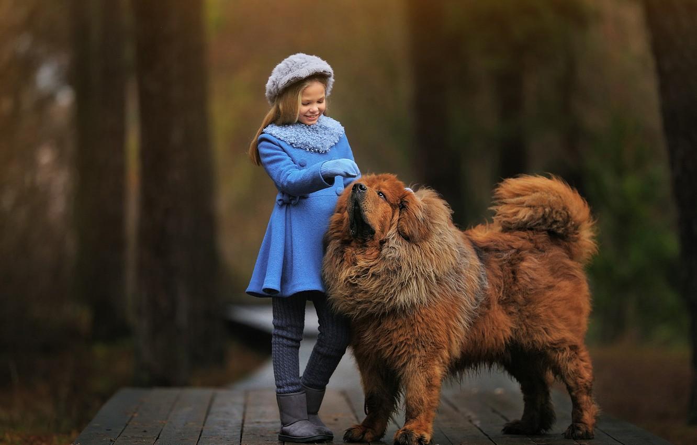 Photo wallpaper dog, girl, Anastasia Barmina