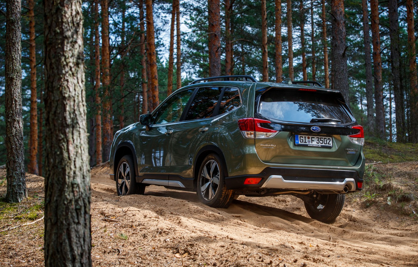 Photo wallpaper Subaru, crossover, coniferous forest, Forester, 2019