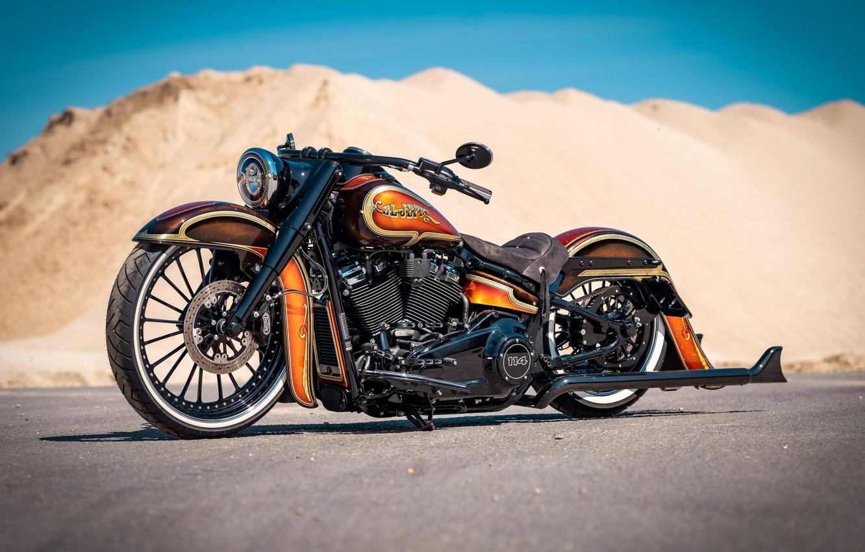 Photo wallpaper Harley Davidson, Harley-Davidson, Custom, Motorcycle, Thunderbike, By Thunderbike, Heavy Road Bike, THE HEAD