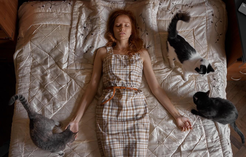 Фото обои девушка, кошки, кровать, Max Fiyah